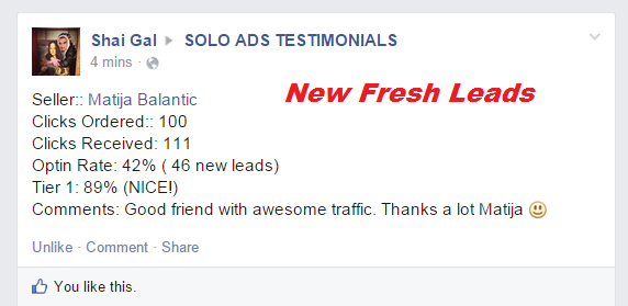 solo ads leads